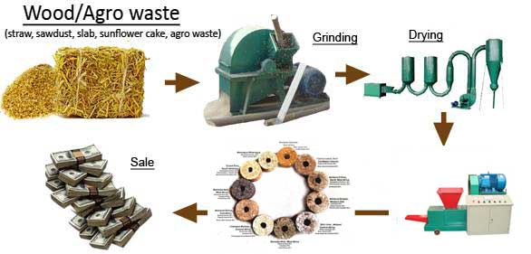 biomass briquette system